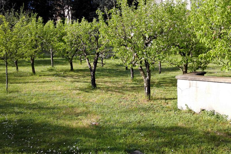 Parco verde interno alla struttura