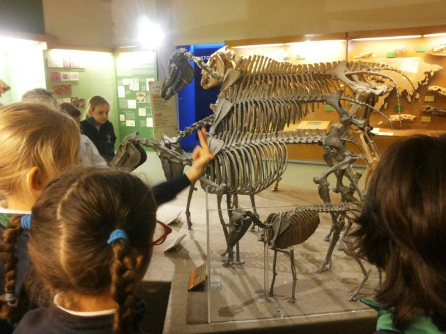 Visita al Museo paleontologico